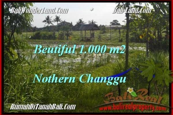 Magnificent 1,000 m2 LAND SALE IN CANGGU TJCG180