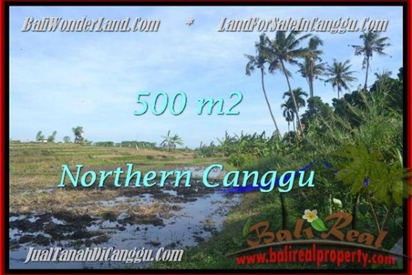 Exotic PROPERTY 500 m2 LAND IN CANGGU BALI FOR SALE TJCG181