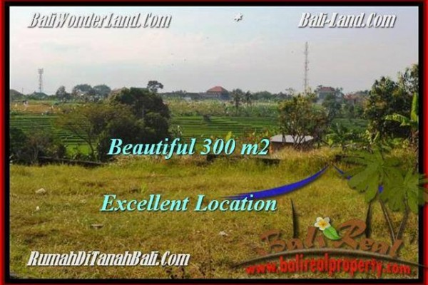 Exotic PROPERTY 300 m2 LAND IN CANGGU BALI FOR SALE TJCG185