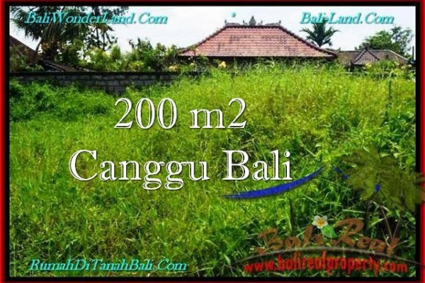 Affordable PROPERTY 200 m2 LAND IN Canggu Pererenan FOR SALE TJCG190