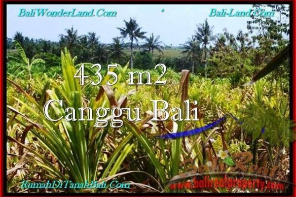 FOR SALE Magnificent PROPERTY 435 m2 LAND IN Canggu Pererenan TJCG196