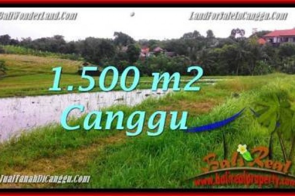 Magnificent PROPERTY CANGGU LAND FOR SALE TJCG198