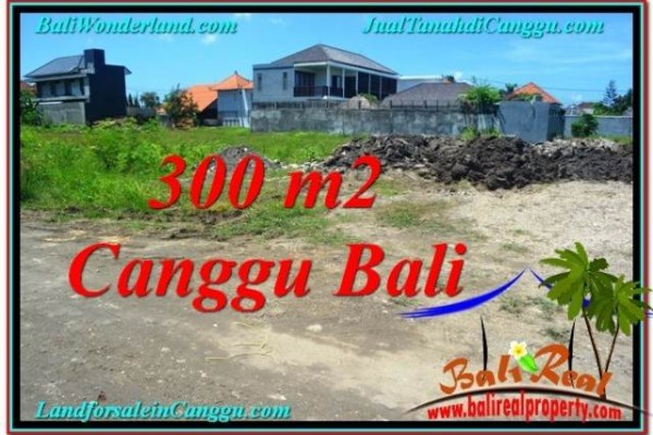 Exotic PROPERTY LAND IN Canggu Brawa FOR SALE TJCG203