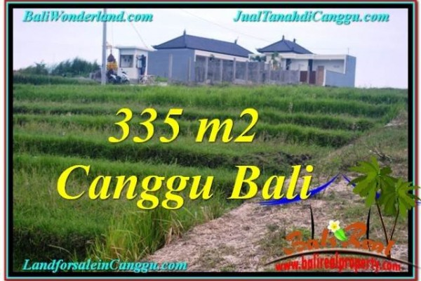 Beautiful PROPERTY 335 m2 LAND FOR SALE IN CANGGU TJCG204