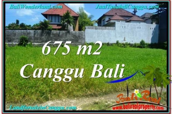 Magnificent 675 m2 LAND IN CANGGU BALI FOR SALE TJCG200