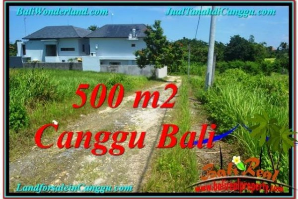 Beautiful 500 m2 LAND IN Canggu Brawa BALI FOR SALE TJCG201