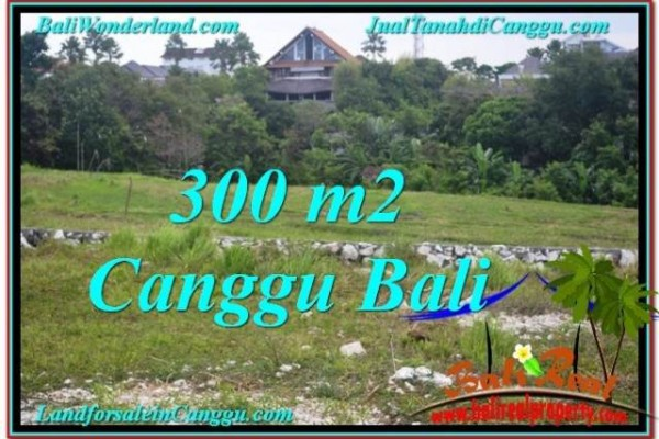 Beautiful PROPERTY 300 m2 LAND FOR SALE IN CANGGU TJCG205