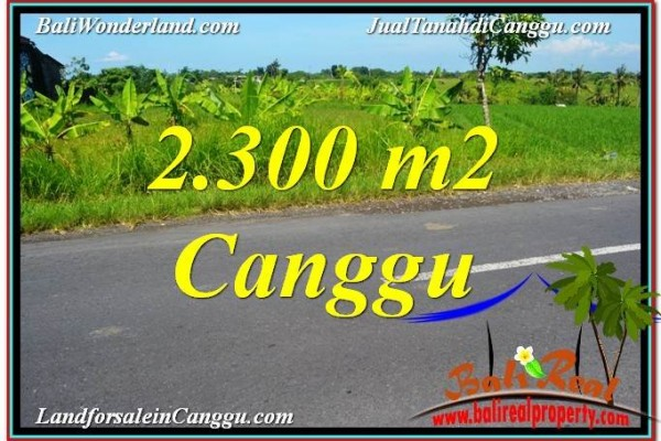 Magnificent CANGGU 2,300 m2 LAND FOR SALE TJCG209
