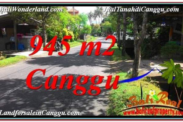 Affordable Canggu Pererenan 945 m2 LAND FOR SALE TJCG210