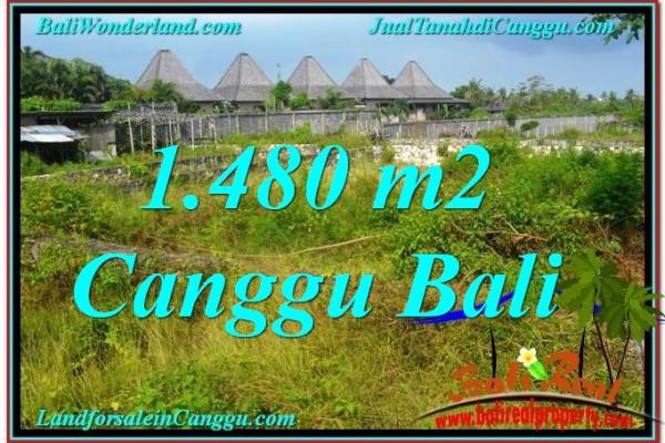 Magnificent PROPERTY LAND SALE IN CANGGU BALI TJCG212