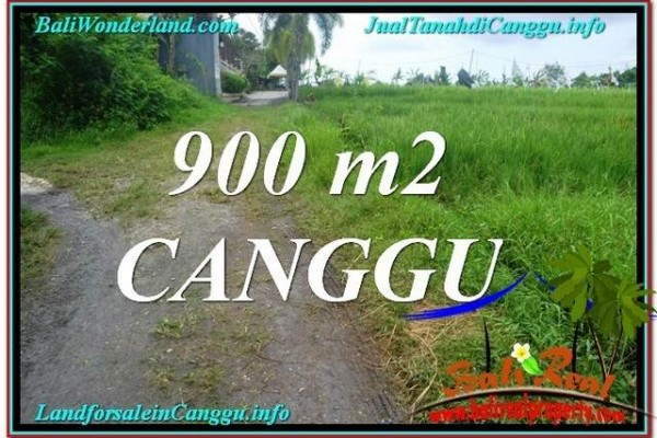 Exotic Canggu Batu Bolong  900 m2 LAND FOR SALE TJCG215