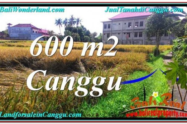 FOR SALE Magnificent 600 m2 LAND IN Canggu Pererenan TJCG211