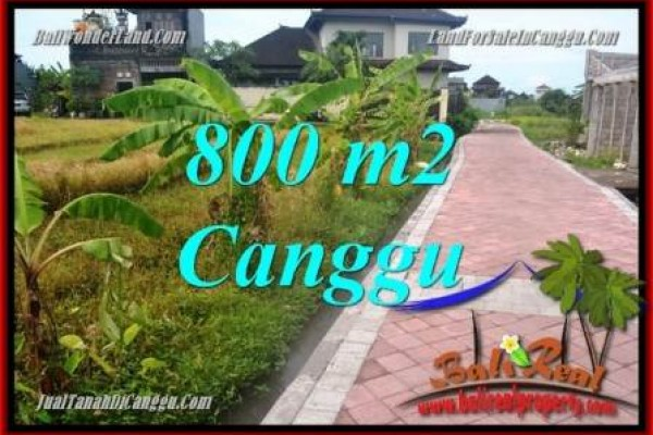 FOR SALE Exotic PROPERTY LAND IN CANGGU BALI TJCG221