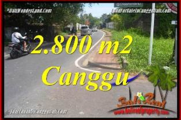 Magnificent PROPERTY 2,800 m2 LAND IN CANGGU BATU BOLONG  FOR SALE TJCG223