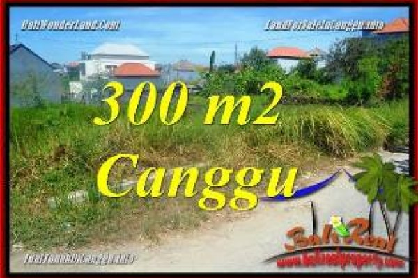 Exotic LAND FOR SALE IN CANGGU BRAWA BALI TJCG225