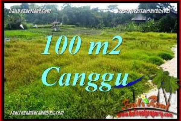 FOR SALE Exotic 100 m2 LAND IN CANGGU BALI TJCG227