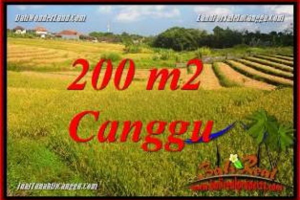 FOR SALE Magnificent PROPERTY LAND IN CANGGU BRAWA BALI TJCG228