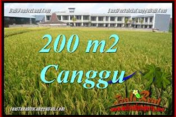 Affordable PROPERTY 200 m2 LAND FOR SALE IN CANGGU TJCG229