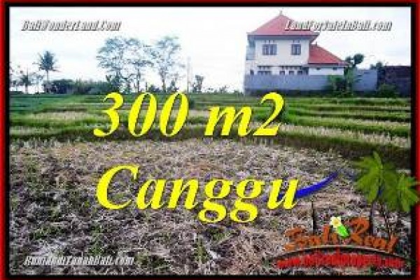 Exotic PROPERTY 300 m2 LAND IN CANGGU PERERENAN FOR SALE TJCG230