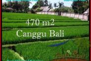 LAND SALE IN Canggu Pererenan TJCG187