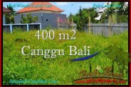 LAND SALE IN Canggu Pererenan TJCG189