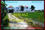 Exotic 800 m2 LAND SALE IN CANGGU TJCG194