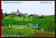 FOR SALE Magnificent 460 m2 LAND IN CANGGU TJCG195