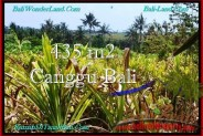 Beautiful 435 m2 LAND FOR SALE IN CANGGU BALI TJCG196