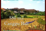 Affordable PROPERTY 580 m2 LAND IN CANGGU BALI FOR SALE TJCG197