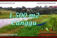 FOR SALE Exotic LAND IN Canggu Batu Bolong TJCG198