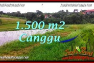 Beautiful LAND SALE IN Canggu Batu Bolong BALI TJCG198