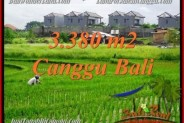 Beautiful CANGGU BALI 3,380 m2 LAND FOR SALE TJCG199
