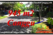Affordable LAND FOR SALE IN Canggu Pererenan TJCG210