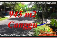 Exotic 945 m2 LAND FOR SALE IN CANGGU TJCG210