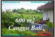 Beautiful PROPERTY 600 m2 LAND FOR SALE IN Canggu Brawa TJCG206