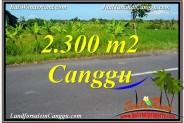 Magnificent PROPERTY 2,300 m2 LAND SALE IN CANGGU BALI TJCG209