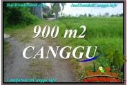 Beautiful LAND FOR SALE IN Canggu Batu Bolong  BALI TJCG215