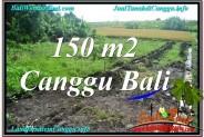 Magnificent CANGGU 150 m2 LAND FOR SALE TJCG213