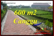 Magnificent PROPERTY 600 m2 LAND FOR SALE IN CANGGU BALI TJCG220