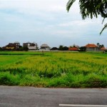 Land for sale in Canggu, Bali LCG033