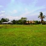 Land for sale in Canggu, Bali LCG038