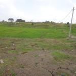 Land for sale in Canggu Bali - LCG063