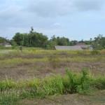 Land for sale in Canggu Bali - LCG064