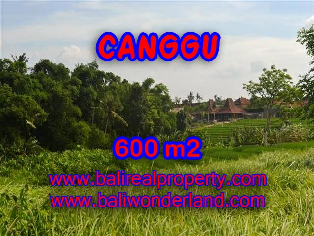 Land for sale in Canggu Bali, Unbelievable view in Canggu – TJCG130