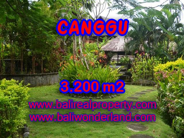 Magnificent Property for sale in Bali, land for sale in Canggu Bali – TJCG129