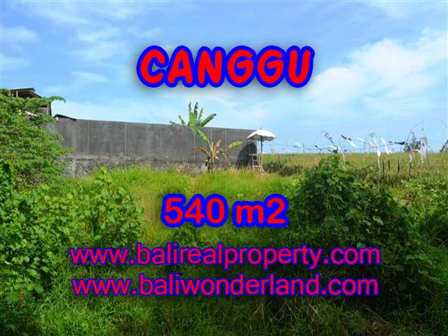 Land for sale in Canggu Bali, Astounding view in Canggu – TJCG131