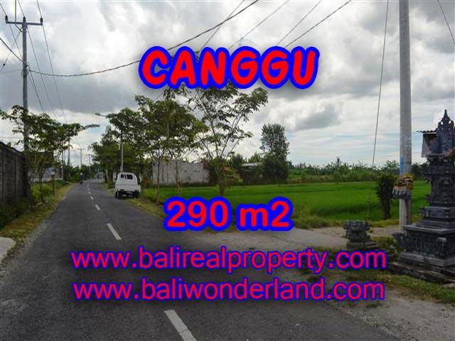 Land for sale in Canggu, Stunning view in Canggu Pererenan Bali – TJCG141