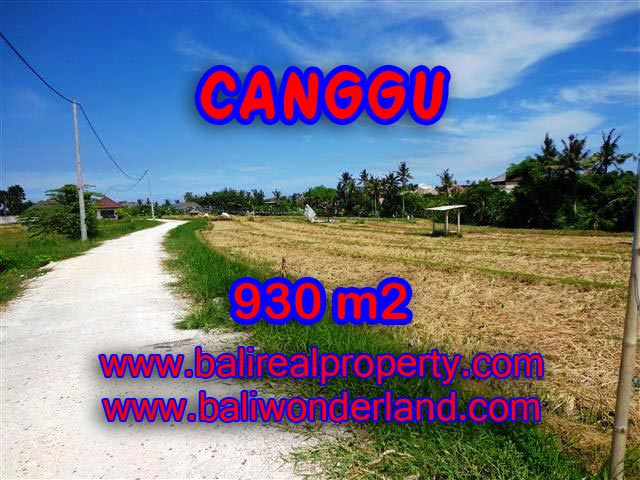 Land for sale in Canggu, Magnificent view in Canggu Pererenan Bali – TJCG146