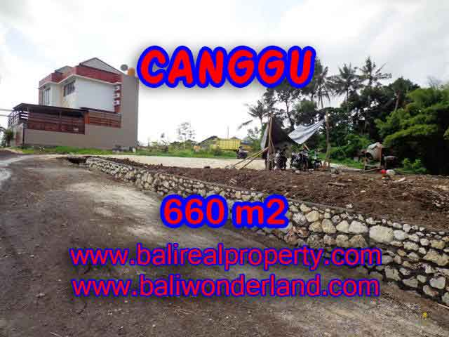 Extraordinary Land for sale in Canggu Bali, Rice fields and river view in Canggu Batu bolong – TJCG149