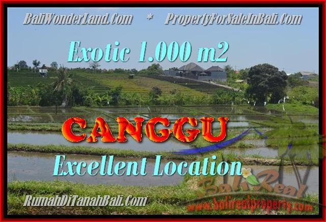 Magnificent PROPERTY 1.000 m2 LAND FOR SALE IN Canggu Kayutulang